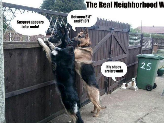 5 tips to help make your neighborhood safer